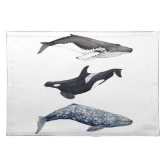 Orca, hunchbacked whale and gray whale placemat