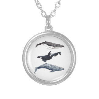 Orca, hunchbacked whale and gray whale silver plated necklace