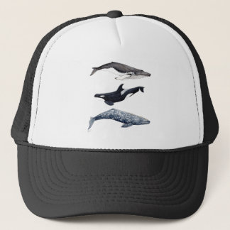 Orca, hunchbacked whale and gray whale trucker hat