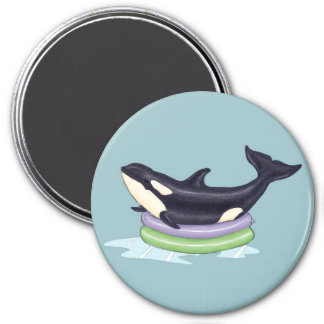 Orca in a swimming pool magnet