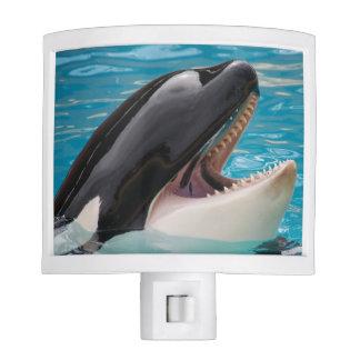 Orca, killer whale nite light