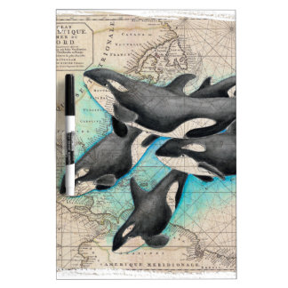 Orca Map Atlas Dry-Erase Whiteboard