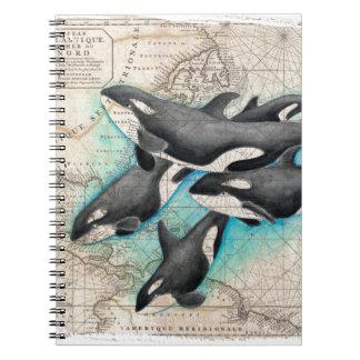 Orca Map Atlas Notebooks