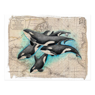 Orca Map Atlas Postcard