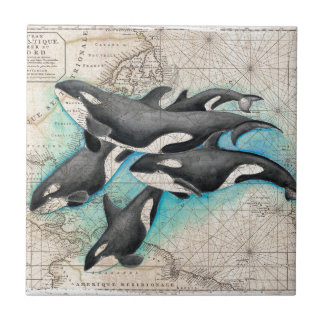 Orca Map Atlas Tile