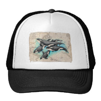 Orca Map Atlas Trucker Hat