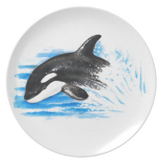 Orca Playing Dinner Plate