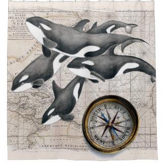 Orca Pod Compass