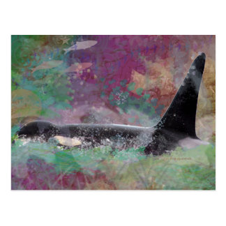 Orca Whale Fantasy Dream - I Love Whales Postcard