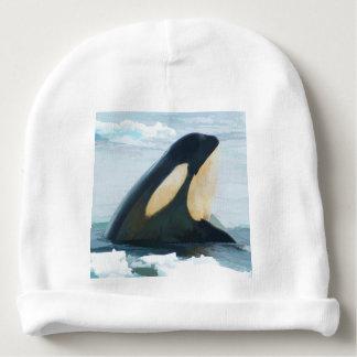 Orca Whale Spyhop blue Baby Beanie