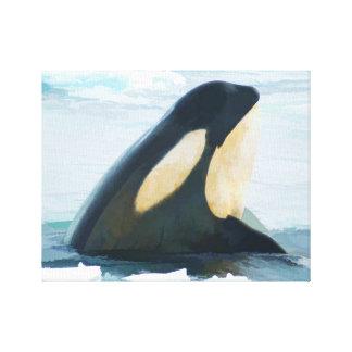 Orca Whale Spyhop blue Canvas Print