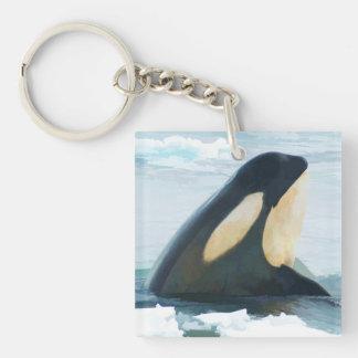 Orca Whale Spyhop blue Keychain