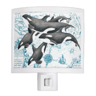 Orca whales family ancient blue nite light
