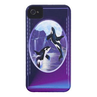 Orcas In A Bay iPhone 4 Case-Mate Case