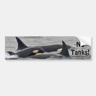 "Orcas ""No Tanks"" Bumper Sticker"