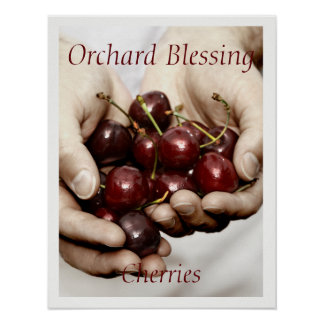 Orchard Blessing. Cherries Photo customisable text Poster