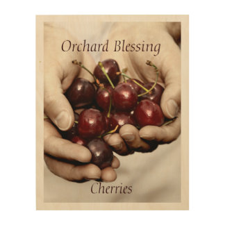 Orchard Blessing. Cherries Photography Wood Print