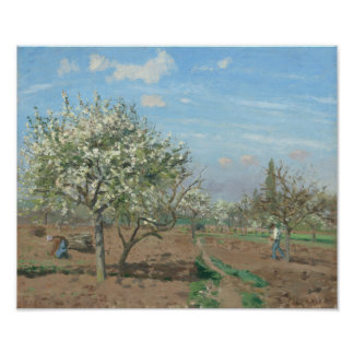 Orchard in Bloom, Louveciennes  France by Pissarro Poster