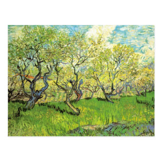 Orchard in Blossom by Vincent van Gogh Postcard