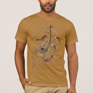 Orchard Oriole Men's Organic T-Shirt