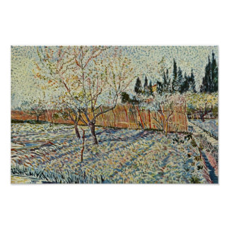 Orchard With Cypress By Vincent Van Gogh Poster