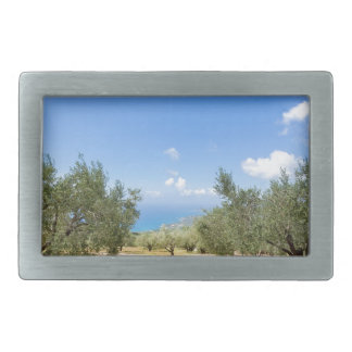 Orchard with olive trees at sea in  Greece Belt Buckle