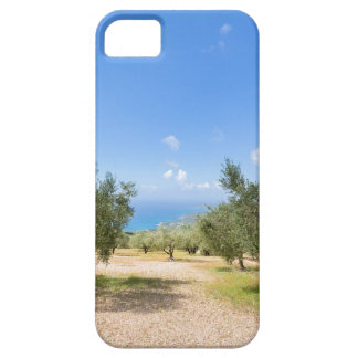 Orchard with olive trees at sea in  Greece Case For The iPhone 5