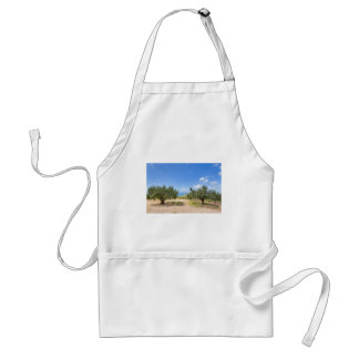 Orchard with olive trees at sea in  Greece Standard Apron
