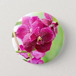 orchid 2 inch round button