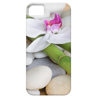 Orchid and Bamboo iPhone 5/5S Cover