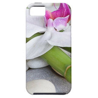 Orchid and Bamboo iPhone 5 Covers