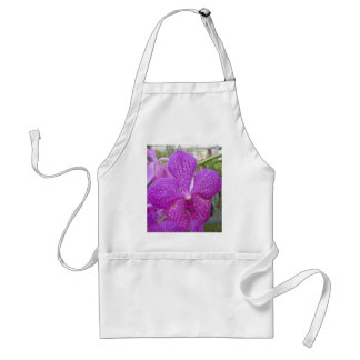 Orchid bloom standard apron