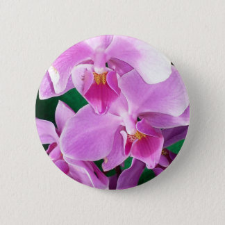 Orchid blooms closeup in pink 2 inch round button