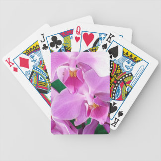 Orchid blooms closeup in pink bicycle playing cards