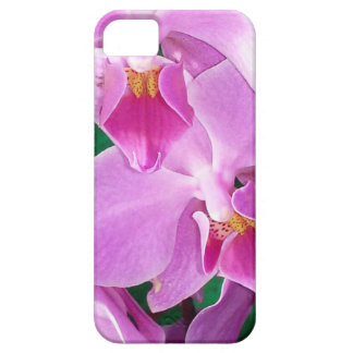 Orchid blooms closeup in pink case for the iPhone 5