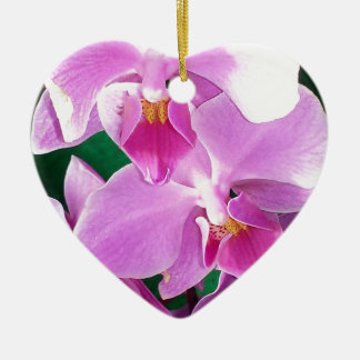 Orchid blooms closeup in pink ceramic ornament