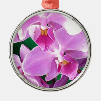 Orchid blooms closeup in pink metal ornament