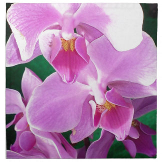 Orchid blooms closeup in pink napkin