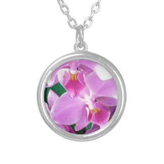 Orchid blooms closeup in pink silver plated necklace