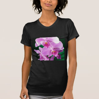 Orchid blooms closeup in pink T-Shirt