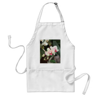 Orchid blooms standard apron