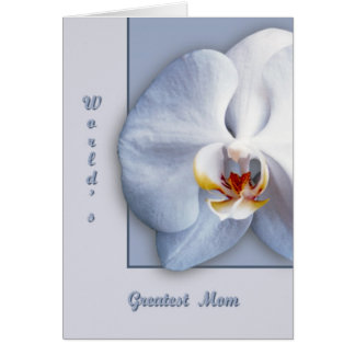 Orchid Blossom Cards