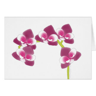 Orchid Branch Card