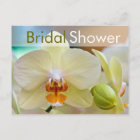 Orchid • Bridal Shower Invitation Postcard
