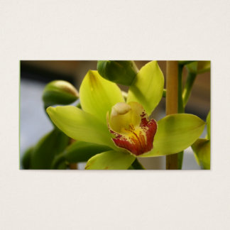 Orchid Business cards