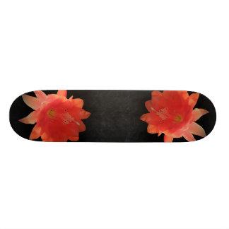Orchid Cactus - Epiphyllum Ackermannii - Blossom Skateboard
