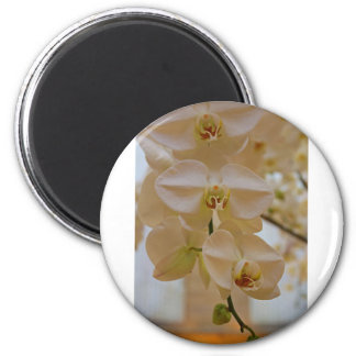 Orchid Cascade 2 Inch Round Magnet