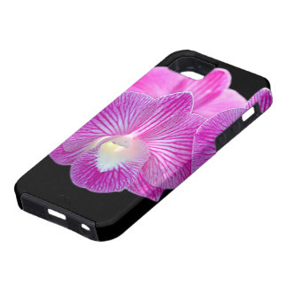 orchid iPhone 5 covers