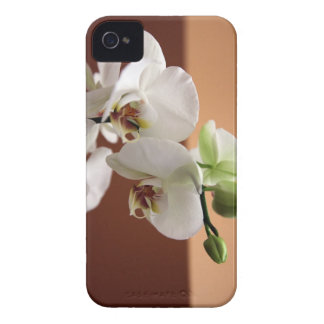 Orchid iPhone 4 Case-Mate Cases
