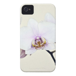 Orchid iPhone 4 Case